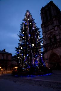 クリスマスツリーとノートルダム大聖堂の写真素材 [FYI03183550]