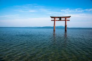白鬚神社 琵琶湖の中の鳥居の写真素材 [FYI03183881]