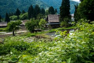富山県五箇山相倉合掌造り集落の写真素材 [FYI03183977]