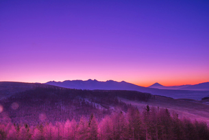 霧ヶ峰高原よりのぞむ夜明けの富士山と八ヶ岳連峰の写真素材 [FYI03184476]