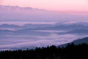 高ボッチ高原より朝焼けに染まる北アルプス連峰と雲海の写真素材 [FYI03184644]