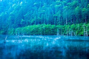 王滝村 蒸気霧流れる自然湖の写真素材 [FYI03184725]