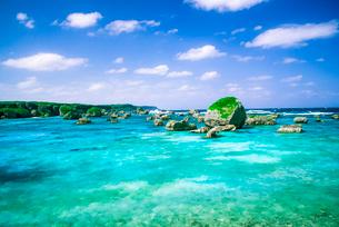 宮古島東平安名崎 隆起珊瑚礁とエメラルドグリーンの海の写真素材 [FYI03184933]