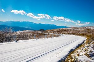 冬の霧ヶ峰ビーナスラインの写真素材 [FYI03185026]