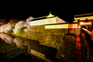 ライトアップの山形城二ノ丸東大手門櫓と夜桜の写真素材 [FYI03185414]