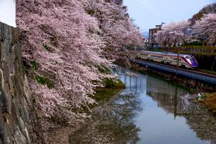 山形新幹線と山形城満開の桜の写真素材 [FYI03185430]