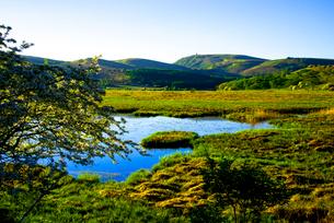 朝の八島ヶ池と八島ケ原高層湿原の写真素材 [FYI03185521]