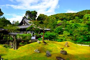 鷲峰山高台寺の写真素材 [FYI03185532]
