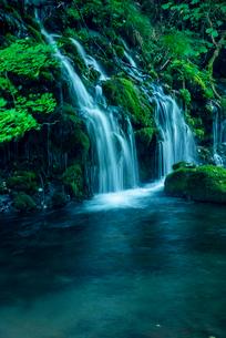 元滝伏流水の写真素材 [FYI03185694]