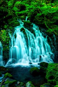 元滝伏流水の写真素材 [FYI03185719]
