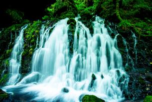 元滝伏流水の写真素材 [FYI03185723]