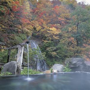 鬼怒川温泉の八丁の湯 栃木県の写真素材 [FYI03185821]