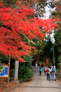 高尾山登山口に立つ東海自然歩道起点の石塔とハイカーの写真素材 [FYI03185928]