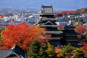 現存する日本最古の五重天守である松本城の写真素材 [FYI03185968]