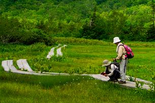 栂池自然園をトレッキングする登山者の写真素材 [FYI03185998]