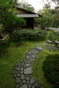 日本最古の禅寺である建仁寺の庭園の写真素材 [FYI03186005]