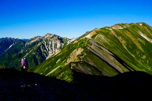 雷鳥坂から眺める白馬岳と杓子岳の写真素材 [FYI03186010]