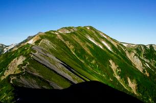 雷鳥坂から眺める白馬岳の写真素材 [FYI03186014]