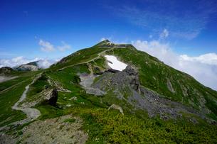 白馬岳縦走路から白馬岳を望むの写真素材 [FYI03186034]