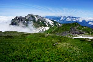 白馬岳から眺める杓子岳と鑓ヶ岳の写真素材 [FYI03186035]