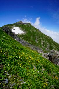 白馬岳縦走路から白馬岳を望むの写真素材 [FYI03186037]