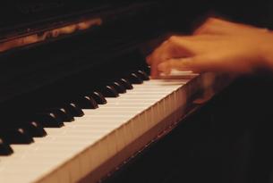 ピアノを演奏する手の写真素材 [FYI03186170]