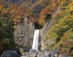 紅葉した木々と苗名滝 妙高高原町 新潟県の写真素材 [FYI03187099]