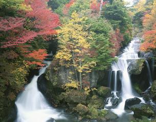 紅葉と竜頭の滝  日光市 栃木県の写真素材 [FYI03187164]