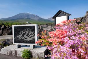 ツツジ咲く浅間山の写真素材 [FYI03187532]