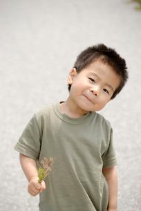 草花を持つ男の子の写真素材 [FYI03188230]