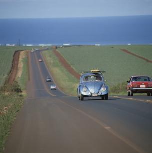 ワーゲンと道 パイナップルフィールド オアフ島 ハワイの写真素材 [FYI03188824]