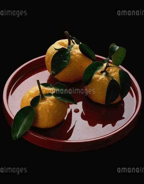 柚子の写真素材 [FYI03188830]