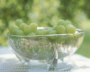 ガラス鉢に入ったブドウ(マスカット)の写真素材 [FYI03188904]