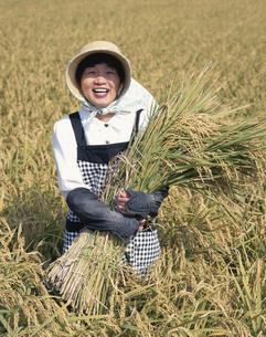 稲と女性の写真素材 [FYI03189012]