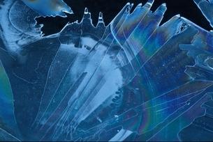 冬の氷の模様 埼玉県の写真素材 [FYI03189040]