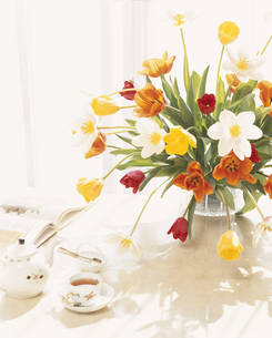 花瓶に入ったチューリップとテーブルの紅茶の写真素材 [FYI03189350]