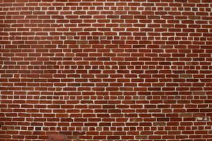 レンガの壁の写真素材 [FYI03189546]