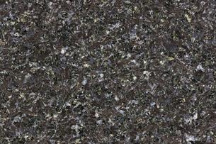 大理石の写真素材 [FYI03189559]