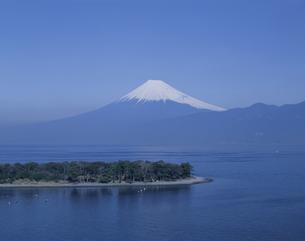 大瀬崎と富士山 静岡県の写真素材 [FYI03189709]