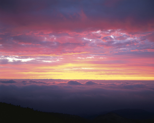 朝焼けと雲海   群馬県の写真素材 [FYI03189801]