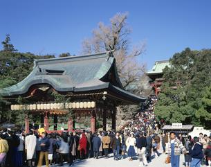 初詣で  鶴岡八幡宮 神奈川県の写真素材 [FYI03189907]