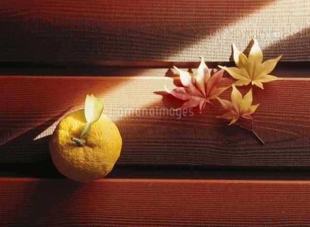 ゆずと紅葉した3枚のモミジの葉の写真素材 [FYI03190441]