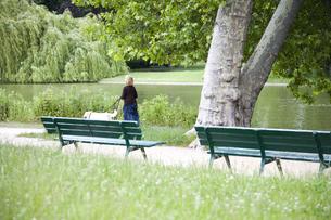 公園のベンチと犬の散歩をする女性の後姿の写真素材 [FYI03190683]