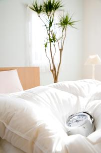 目覚まし時計とベッドと観葉植物の写真素材 [FYI03190703]