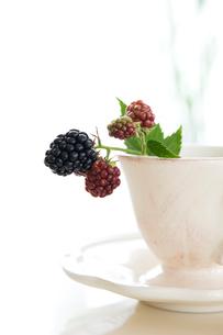 ブラックベリーの実とコーヒーカップの写真素材 [FYI03190822]