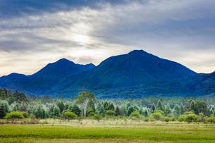 小田代ヶ原のシラカバ林 左から小真名子山,大真名子山の写真素材 [FYI03190915]
