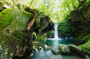 栃木県 おしらじの滝の写真素材 [FYI03191132]