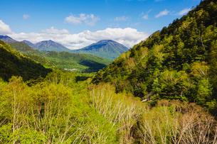 奥日光 新緑の男体山と大真名子山の写真素材 [FYI03191169]