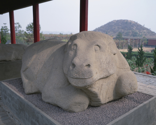 茂陵博物館 石彫 臥牛  西安郊外 中国の写真素材 [FYI03191868]