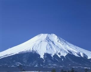 富士山と青空 忍野村 山梨県の写真素材 [FYI03192114]